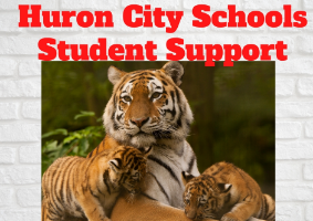 Huron City Schools Student Support