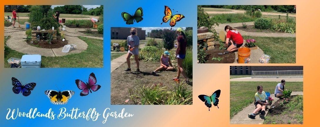 Woodlands Butterfly Garden